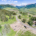 106-Bear-Scratch-Ln-Mt-Crested-Butte-Construction-David-Gross-General-Contractor-008